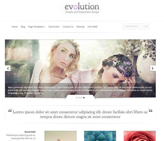 evolution theme review elegant themes good