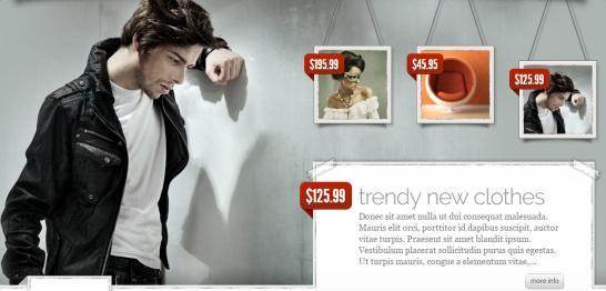 eStore Theme Review - Elegant Themes   WORTH ?