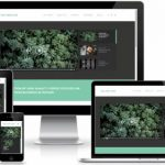 The Motion - Magazine Blog WordPress theme by ThemeIsle