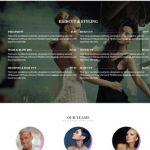 The Styler CSSIgniter - Beauty WordPress Business Theme
