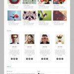 Tequila WordPress Genesis Portfolio Theme by Zigzagpress