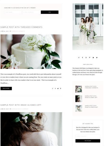 Blog Page Template - Boss Pro