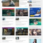 NewsToday News Magazine WordPress Theme - MyThemeShop
