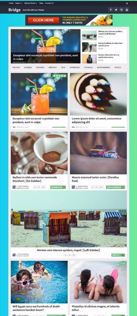 Bridge Mythemeshop Demo - Magazine WordPress Theme