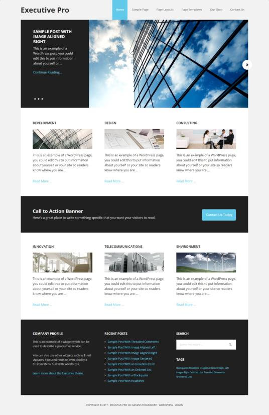 Executive Pro StudioPress - Genesis Business Theme