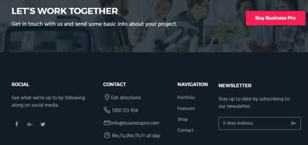 Footer Widgets - Business Pro