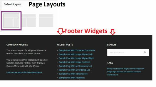 Page Layouts and Footer Widgets - Executive Pro