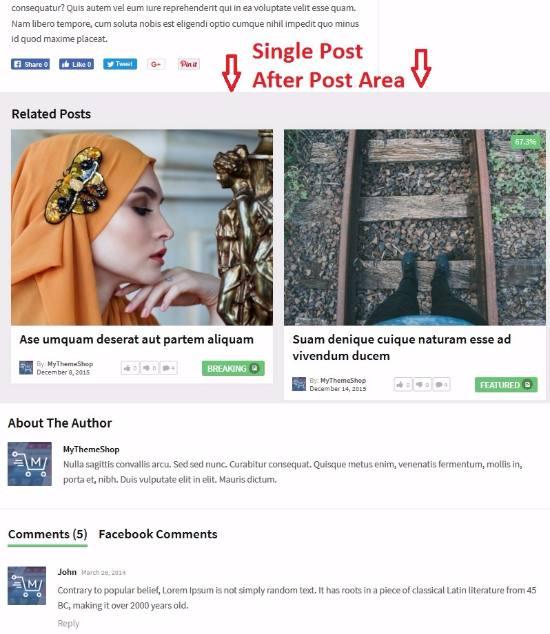 Single Post Features - Bridge Magazine Theme