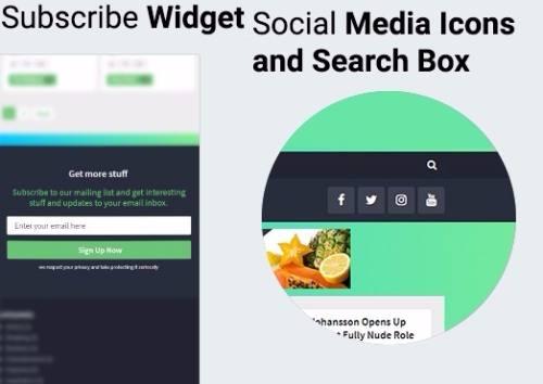 Subscribe Widget and Social Media Icons - Bridge
