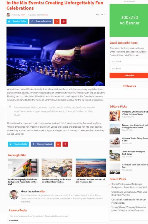 Blog Post Options - GoodSite Theme