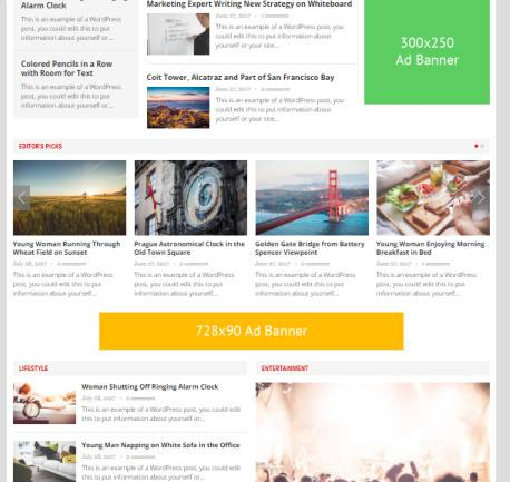 Homepage Widget Grid and Ad Banners - Advanced Theme