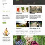 Amalie Anariel Design - WordPres Blog Theme