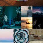 Block Demo - Organic Themes for Photo Bloggers
